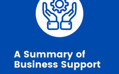 COVID 19: A Summary of Support for Businesses